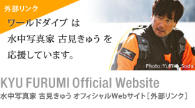 KYU FURUMI Official Websaite